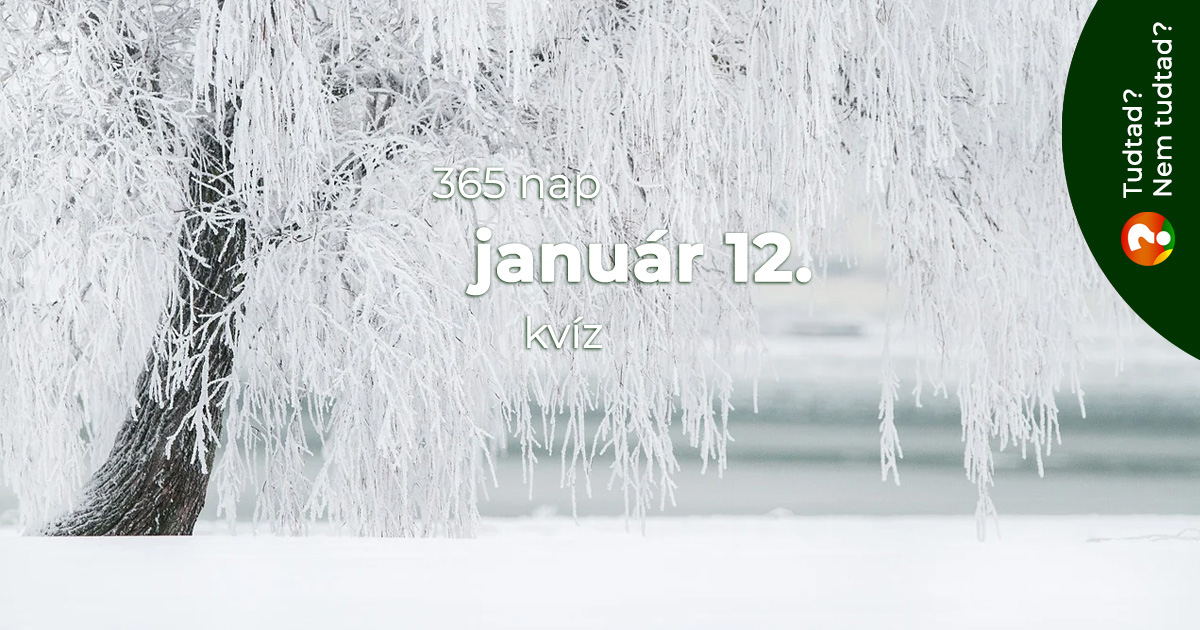 Kvíz - január 12.