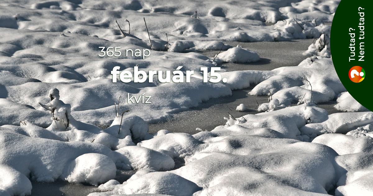 Kvíz - február 15.