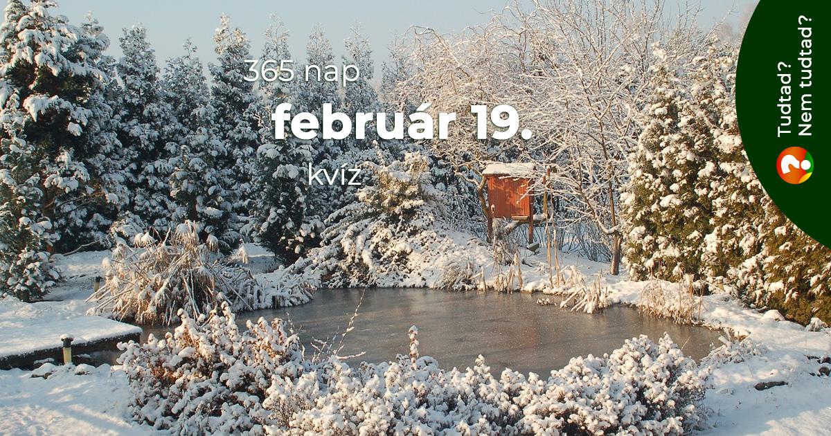 Kvíz - február 19.