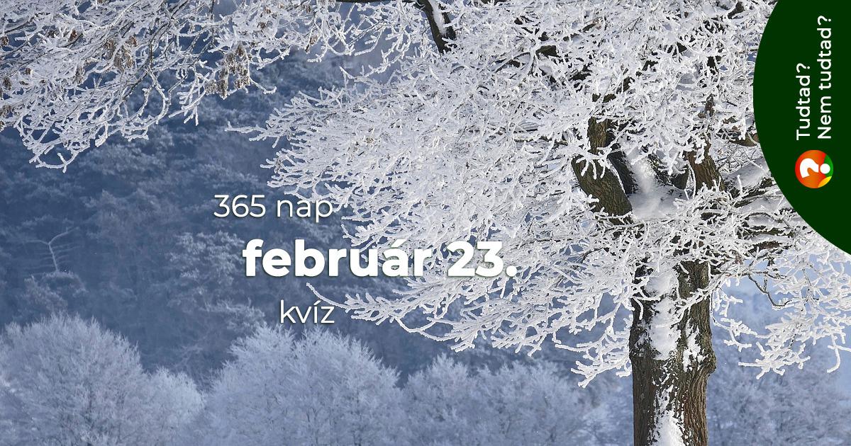 Kvíz - február 23.