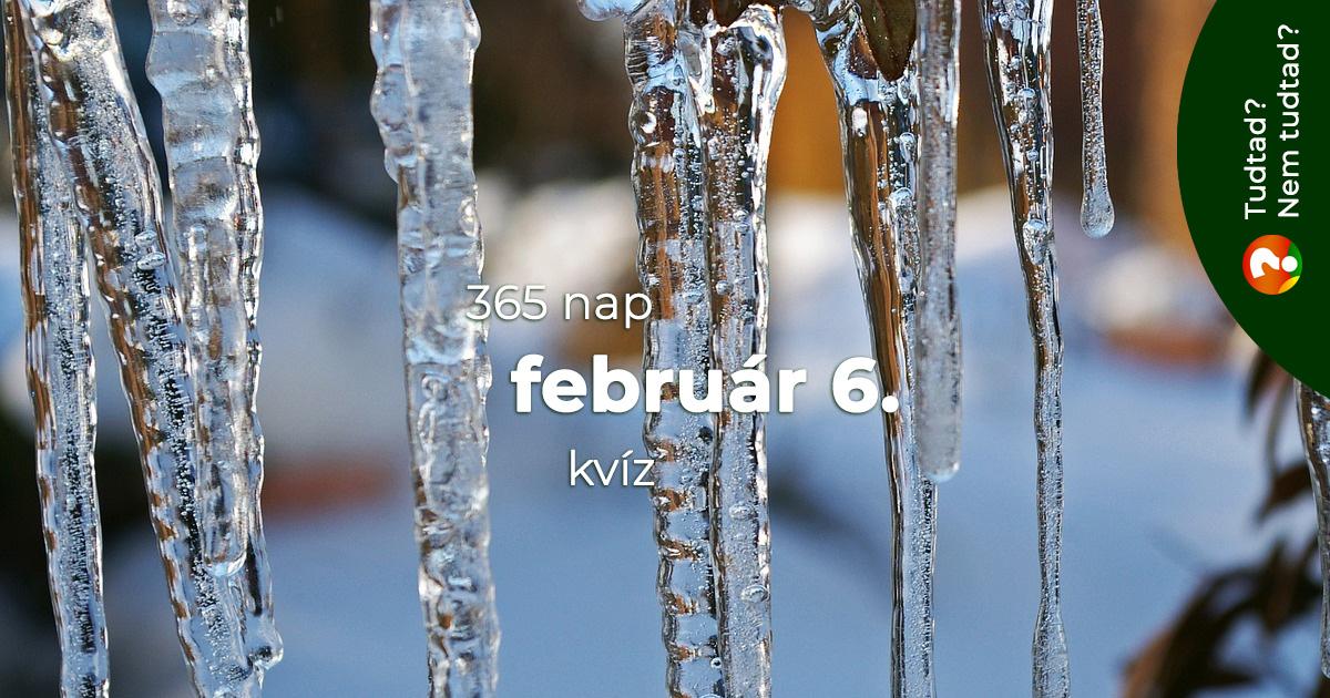 Kvíz - február 6.