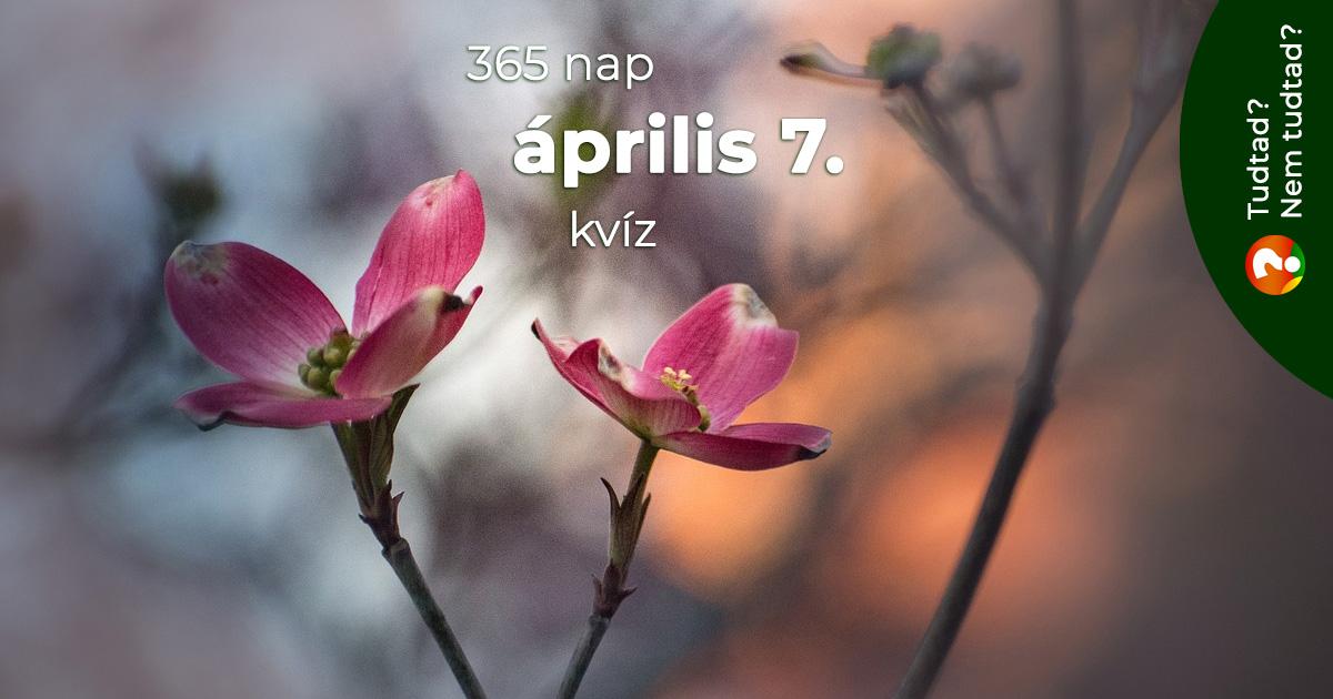 Kvíz - április 7.