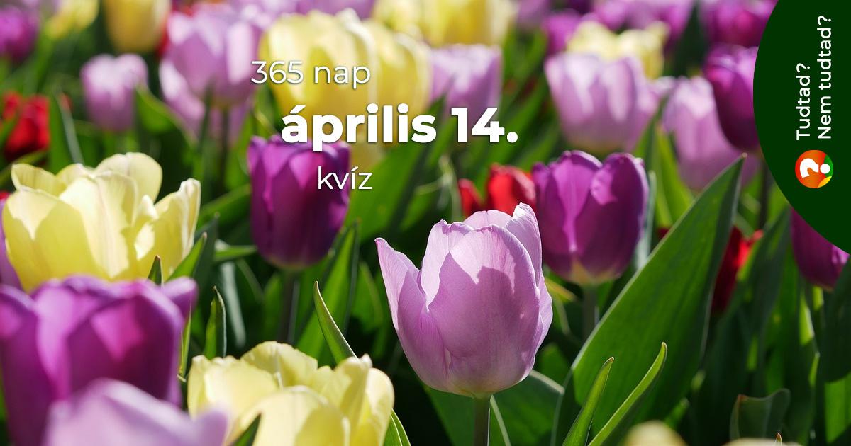 Kvíz - április 14.