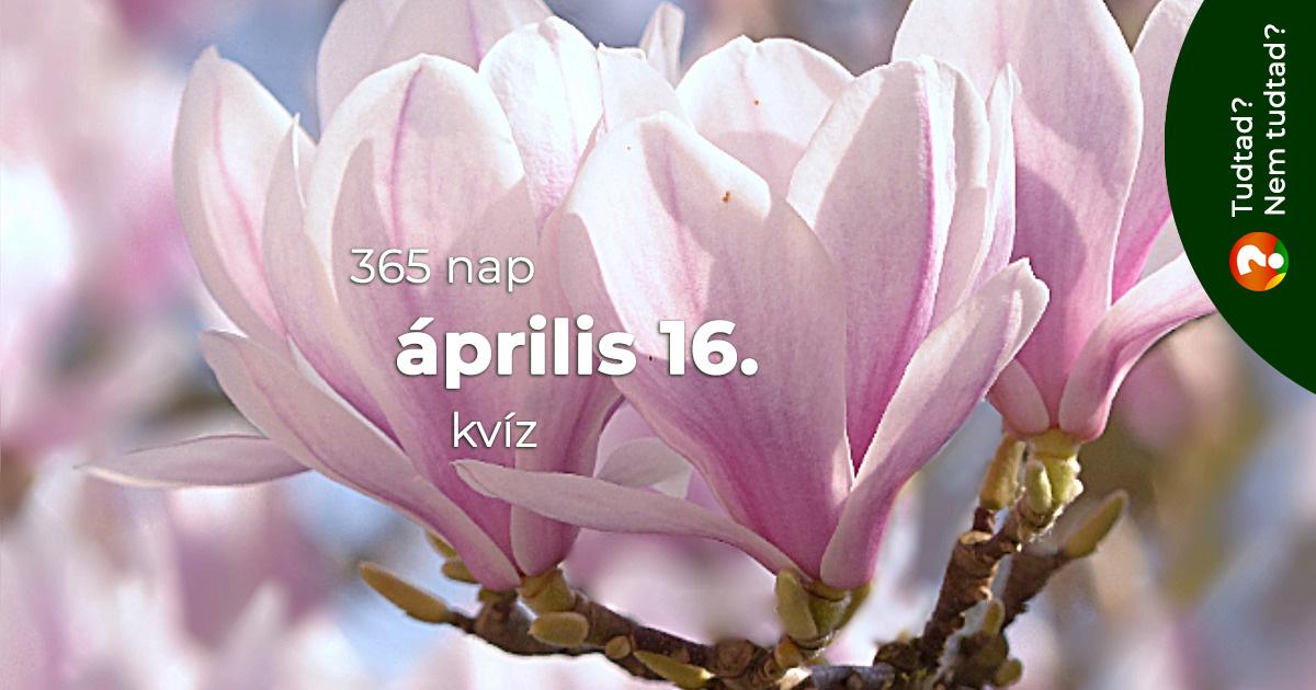 Kvíz - április 16.