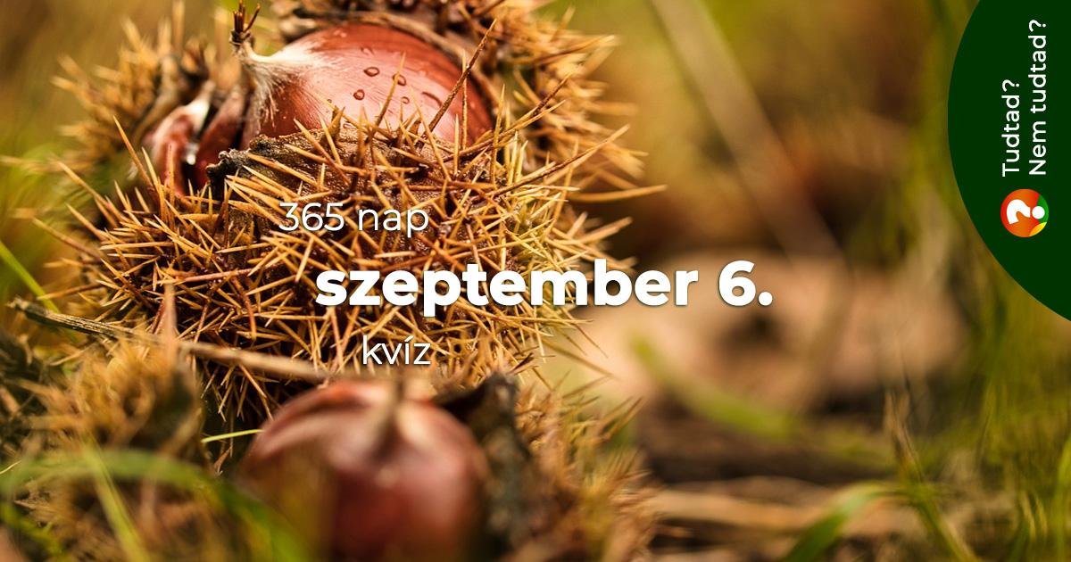 Kvíz - szeptember 6.