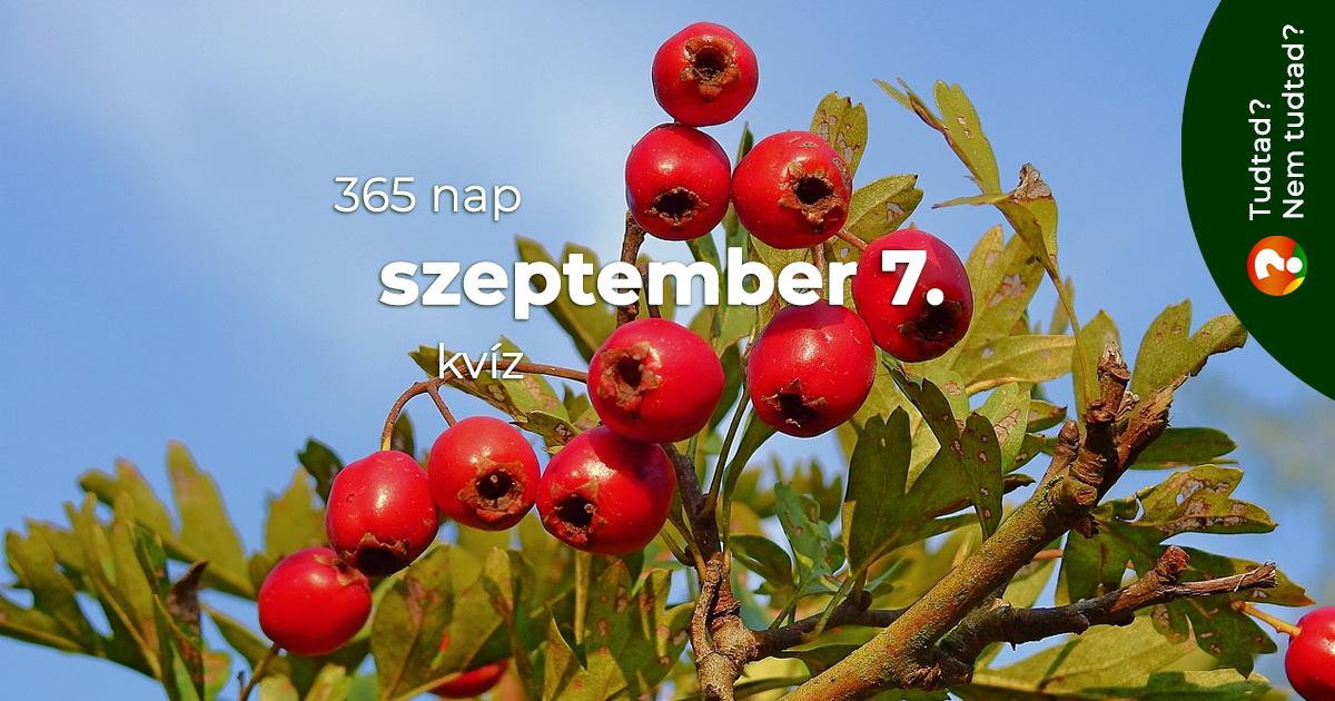 Kvíz - szeptember 7.