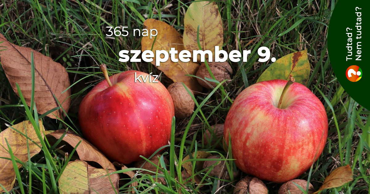 Kvíz - szeptember 9.