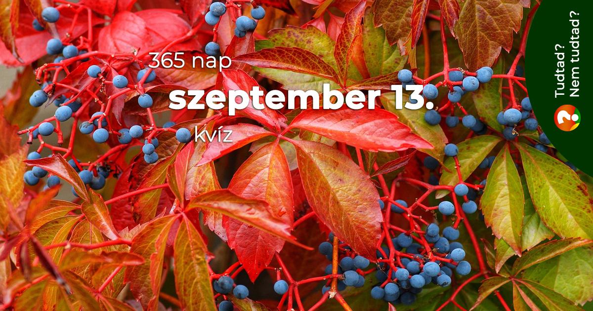 Kvíz - szeptember 13.
