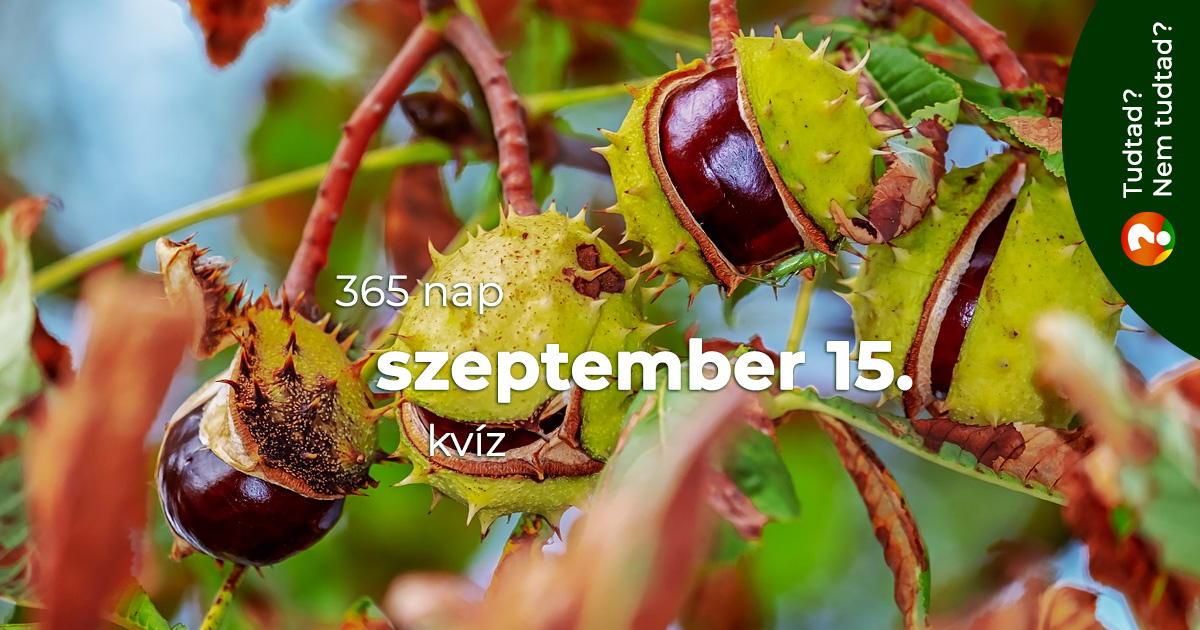 Kvíz - szeptember 15.