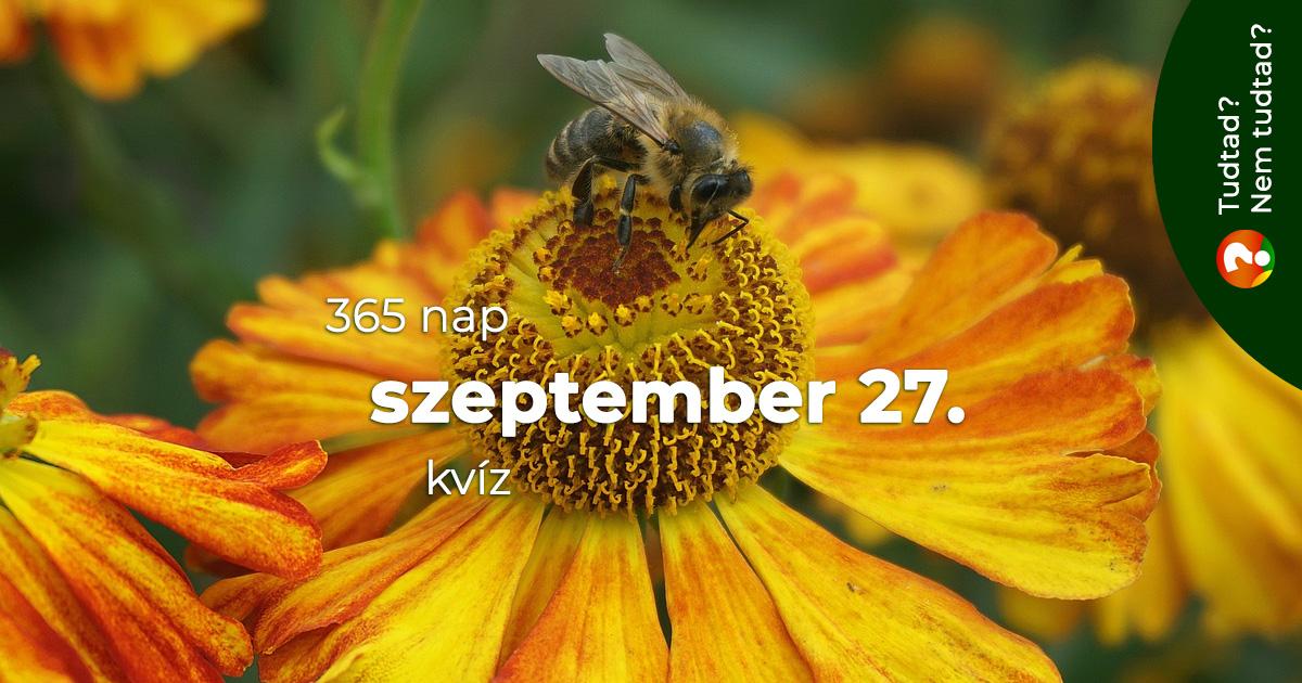 Kvíz - szeptember 27.